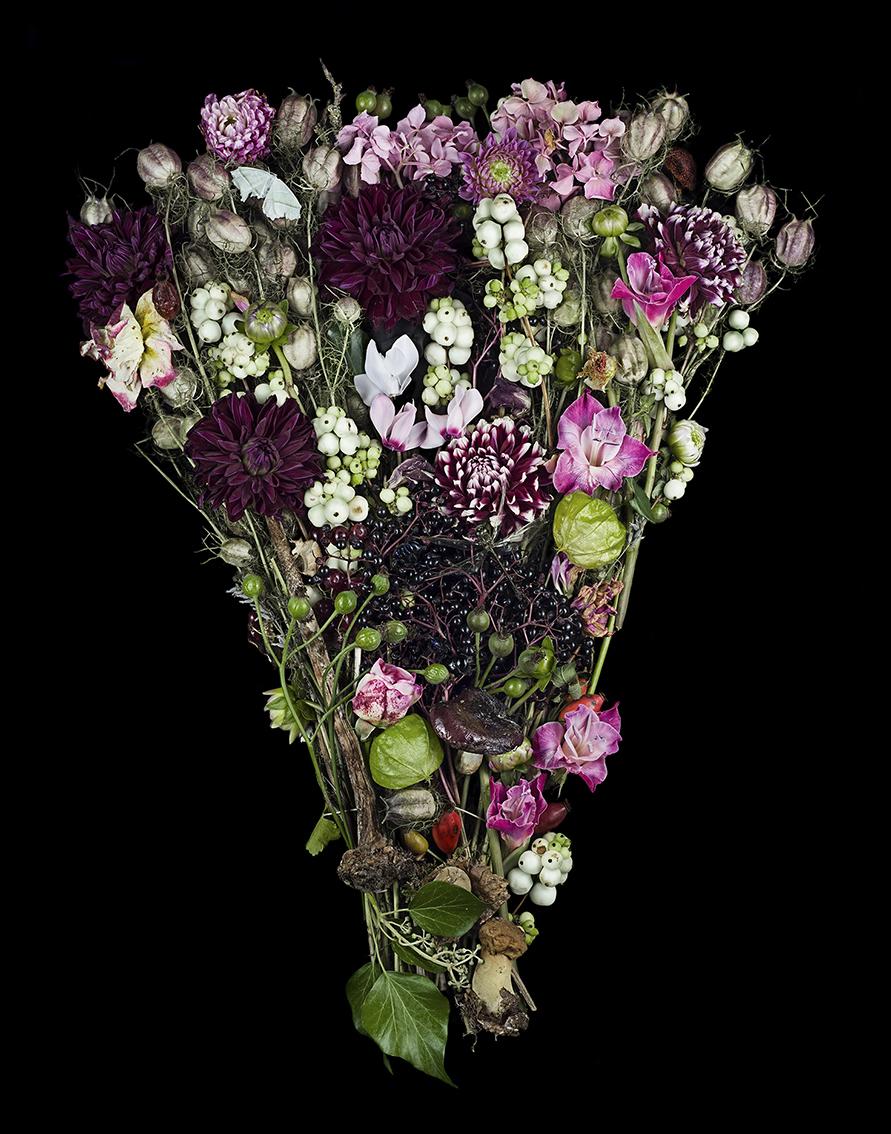 11-hp-pdf-a4-_flowers_00009-prolab