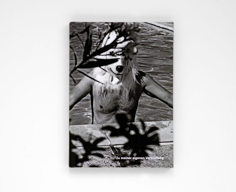 new book: Zu meiner eigenen Verblüffung